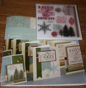 Frosted instructions&stamps